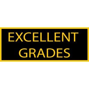 Excellent Grades Patch